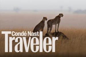 Conde Nast Solo Safari